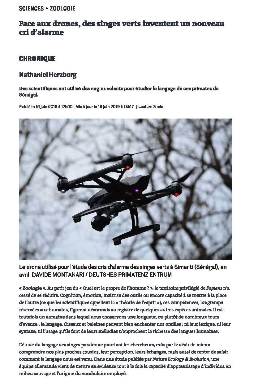 72fc77aaf6 Face aux drones, des singes verts inventent un nouveau cri d'alarme. Le  monde